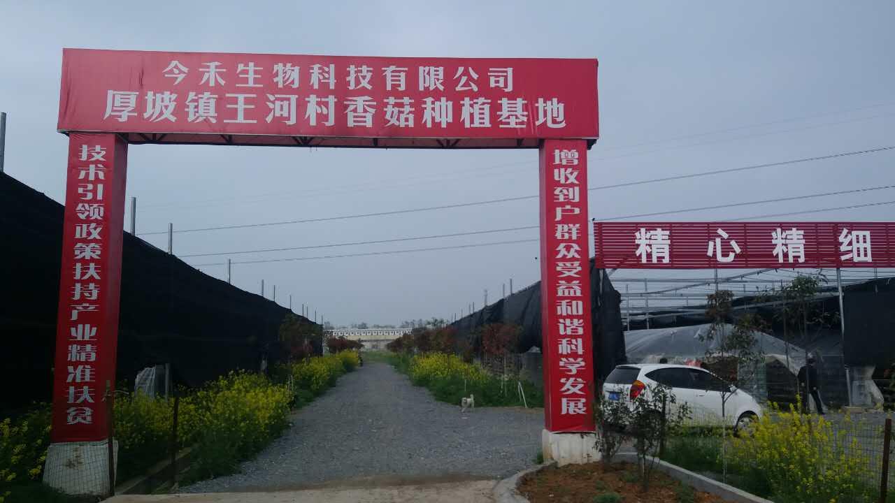 厚坡王河今禾生物香菇扶贫产业基地